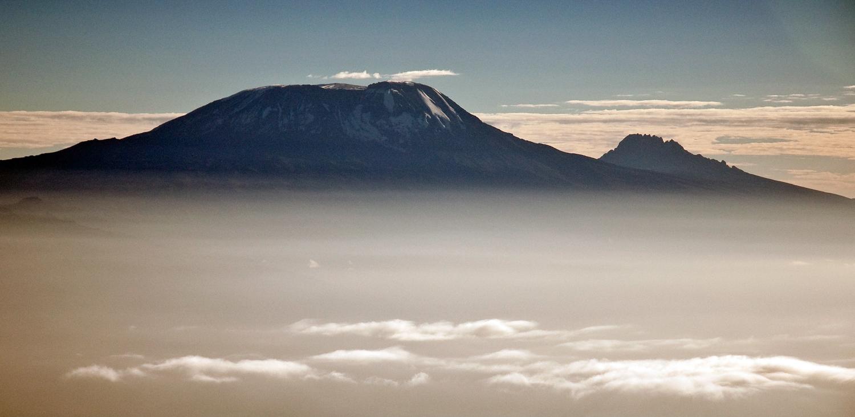 Kilimanjaro Auswahl  von