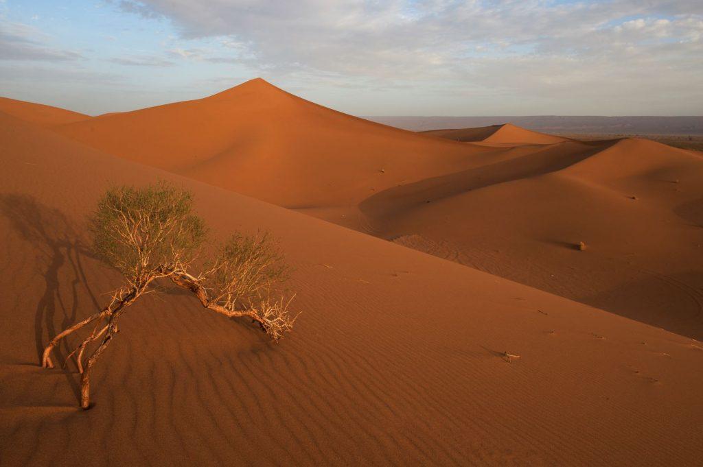 Wüstenparadies Marokko
