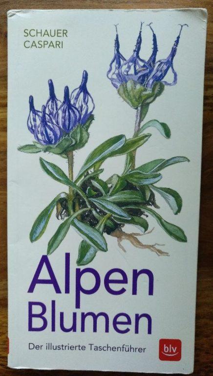 Geschenkidee für wissensdurstige Bergliebhaber: das Alpenblumen-Bestimmungsbuch