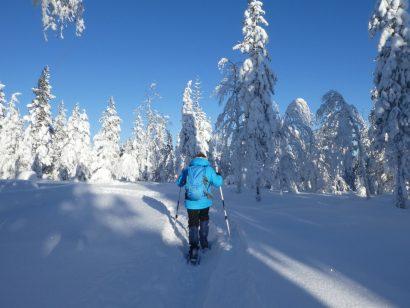Was machen die Schweden im Winter?