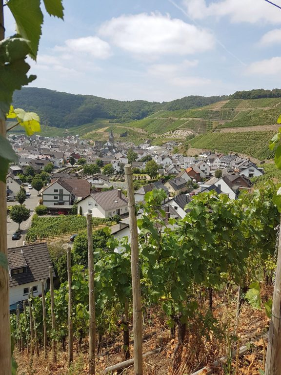 Blick auf den Weinort Dernau