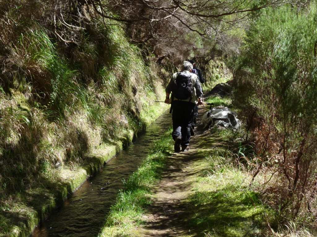 Levadawandern auf der Wanderinsel Madeira