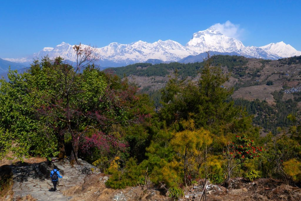 Trekkingtour m Annapurna-Gebiet