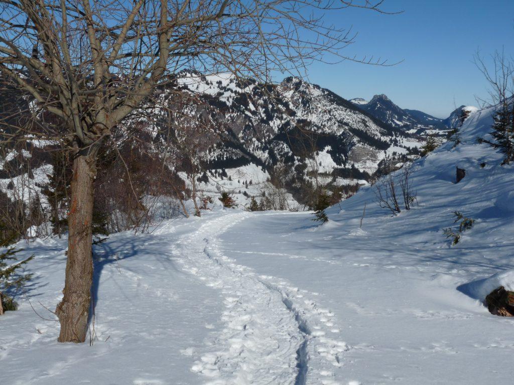 Winter-Wanderweg
