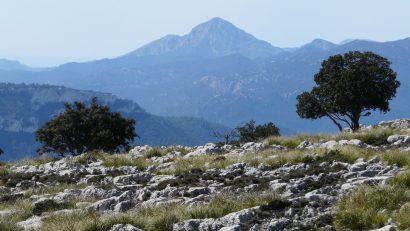 Karstlandschaft Mallorca