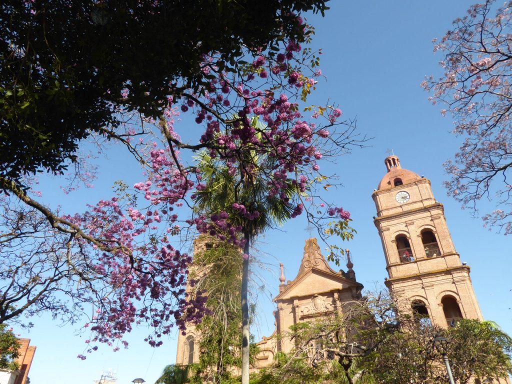 Kathedrale in Santa Cruz