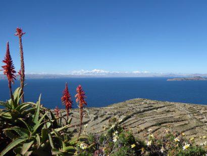 Blick auf den Titicacasee