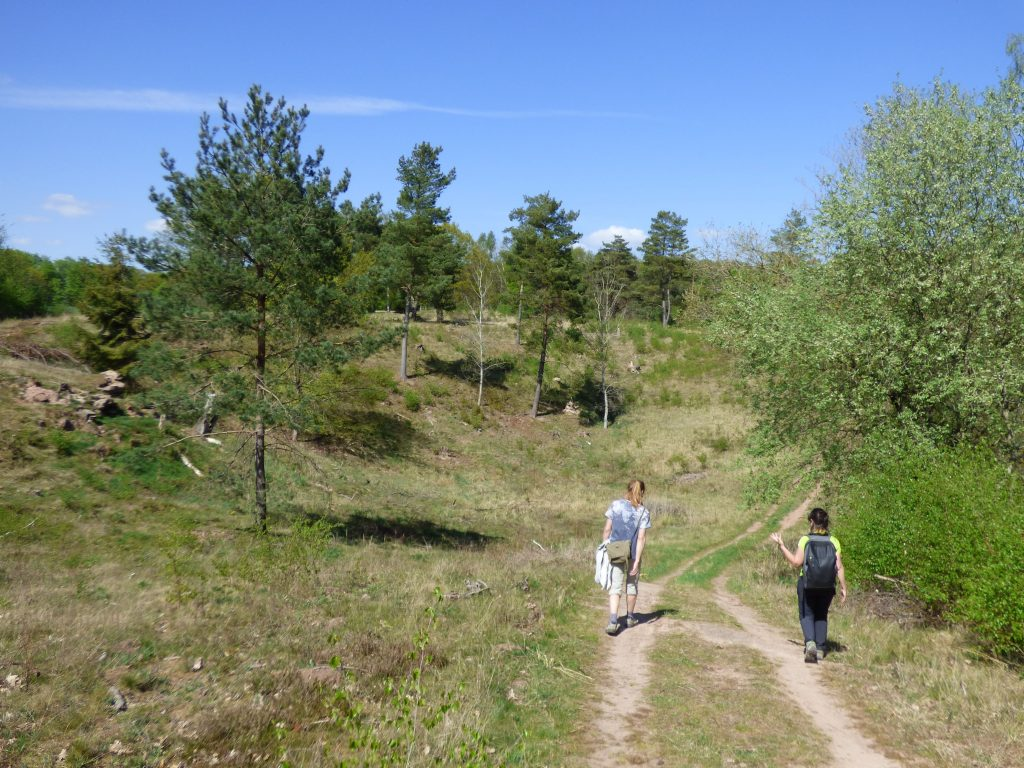 Naturnahe Wege bieten hohen Erlebniswert.