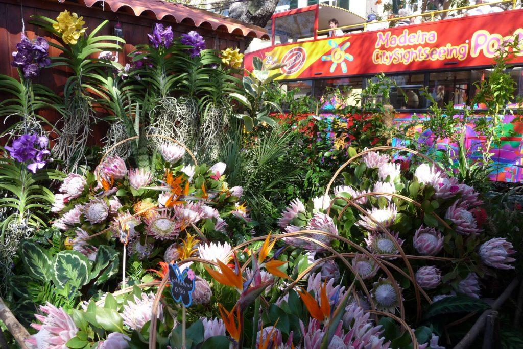 Blumenstand Funchal