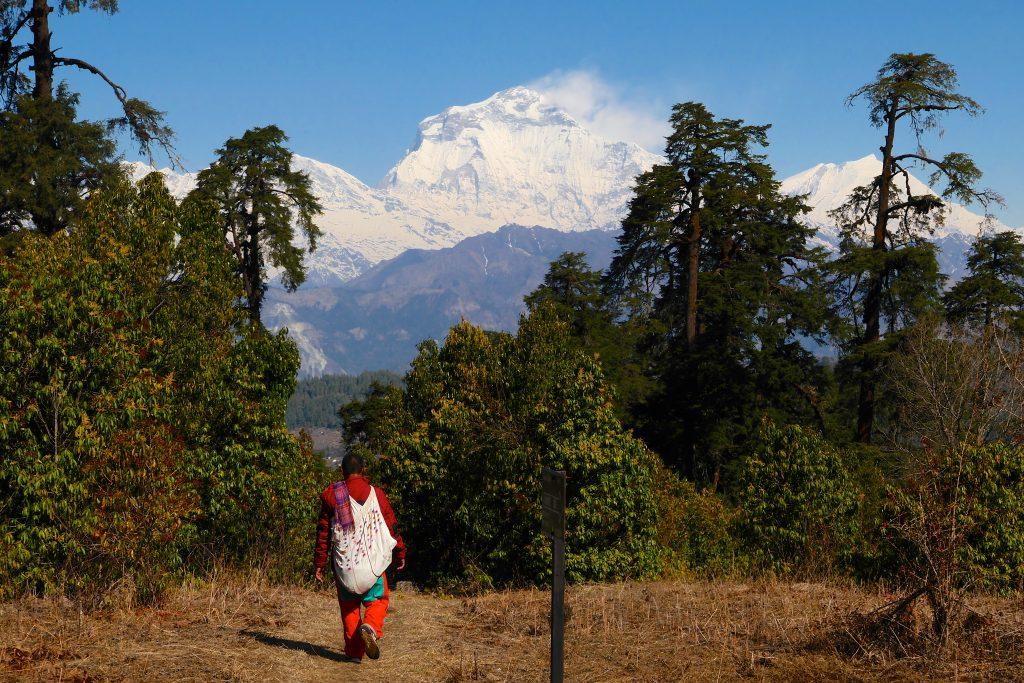 Trekking mit Blick zum Dhaulagiri (8.167 m)